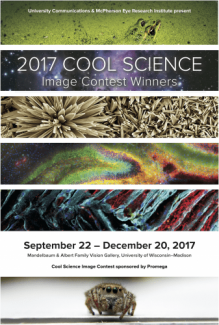 Cool Science 2017 image poster